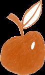 St Clare Group Orange Apple